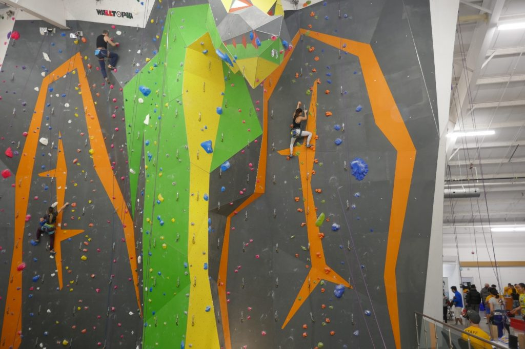Sydney Park at the top of the lead climbing wall